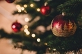Социологи ЮФУ выяснили, с каким настроением жители Ростовской области ждут Нового года